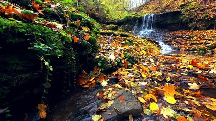 Wall Mural - Awesome view of the unique waterfall and yellow leaves.
