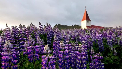 壁紙(ウォールミューラル) - Great view of Vikurkirkja christian church, Iceland, Europe.