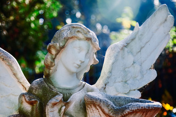 Fototapete - Death. Close up sad angel with urn with dust as symbol of pain, fear and end of life. Ancient statue.