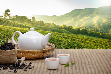 Foto op Canvas Thee Warm cup of tea with teapot, green tea leaves and dried herbs on the bamboo mat at morning in plantations background with empty space, Organic product from the nature for healthy with traditional
