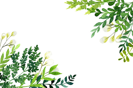 Corner botanical background, greenery with leaves and branches