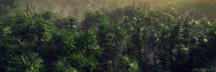 Foto auf Leinwand Schwarz beautiful forest landscape at dawn, foggy wilderness with green trees
