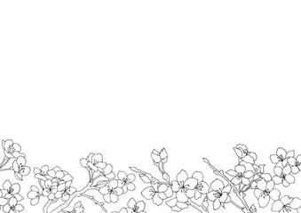 おしゃれな桜フレーム04/イラスト素材/背景素材