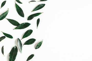 Green tropical leaves on white background. Summer concept. Flat lay, top view