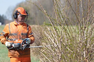 Home and garden concept. Shrubs pruning. Landscaper man worker in uniform with Hedge Trimmer equipment during Bush cutting works.
