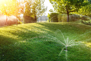 Fotobehang Pistache Landscape automatic garden watering system with different sprinklers installed under turf. Landscape design with lawn hills and fruit garden irrigated with smart autonomous sprayers at sunset time