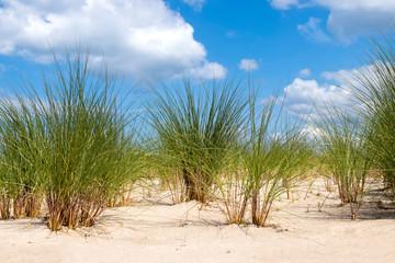 Sandstrand in Warnemünde Ostsee