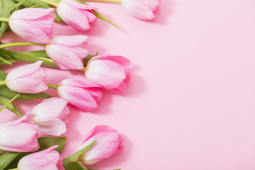 Foto op Aluminium Tulp beautiful pink tulips on pink background