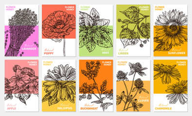 Vector collection of labels, stickers and cards for wildflower honey products. Banners for beekeeping and apiculture with sketch hand drawn illustrations