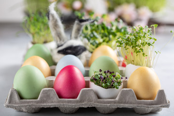 Dyed multi-colored eggs and green sprouts in egg shell  in cardboard packaging. Happy Easter.
