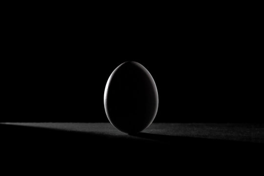 concept. The contour of the eggs on a black background.