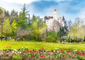 Wall Mural - Landscape with medieval Bran castle, Brasov landmark, Transylvania, Romania