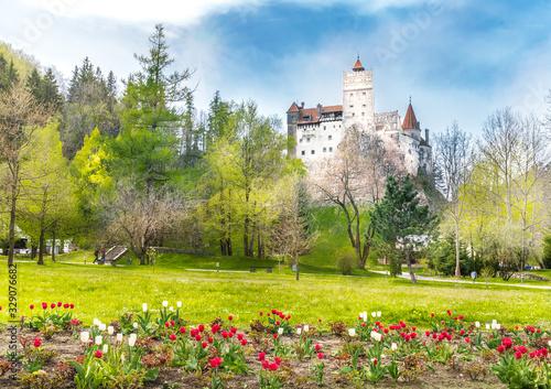 Wall mural Landscape with medieval Bran castle, Brasov landmark, Transylvania, Romania