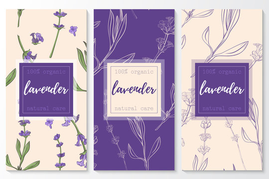 Vector set of lavender natural cosmetic vertical banners on a seamless pattern.