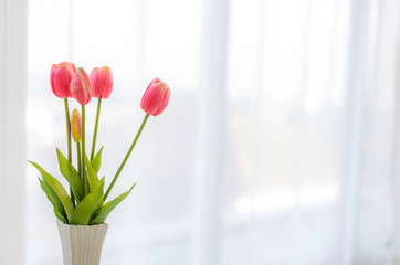 Canvas Prints Floral beautiful fake pink tulips in white vase in bed room with soft sun light and white curtains copy space.