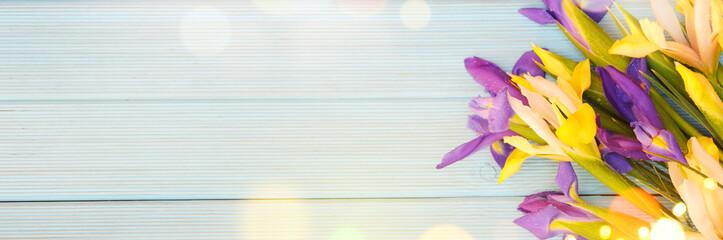 Deurstickers Iris Spring background with blossom