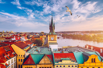 Foto op Aluminium Praag Aerial panorama view with flying birds of the Old Town in Prague, Czech Republic. Red roof tiles panorama of Prague old town. Prague Old Town Square houses with traditional red roofs. Czechia.