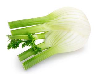 Fototapete - Fresh fennel bulb on white background