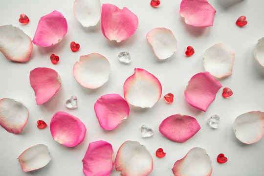 pink and white rose petals on white background.