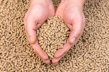Hands holding granules of animal feed