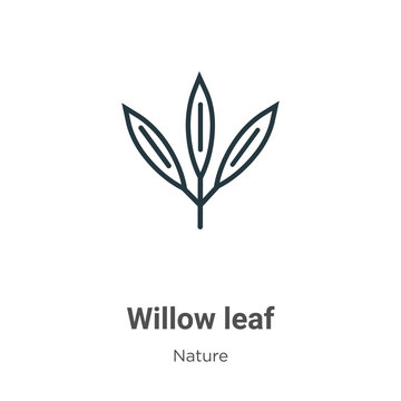 Willow leaf outline vector icon. Thin line black willow leaf icon, flat vector simple element illustration from editable nature concept isolated stroke on white background