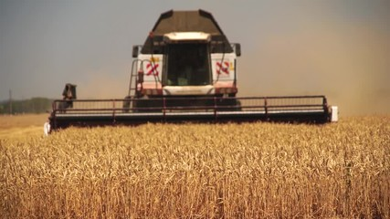 Etiqueta Engomada - Blurred сombine harvester for harvesting wheat. Slow motion