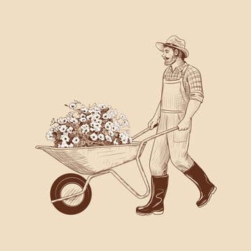 .Gardener with a wheelbarrow and flowers seedlings. Vintage vector illustration. Ink drawing in retro style.