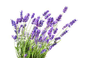 Spoed Fotobehang Lavendel Bunch of lavender