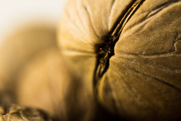 Macrophotography of a walnut. Walnut without shell