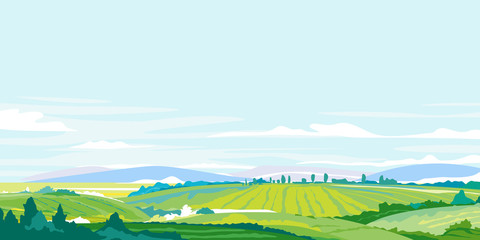 Green agricultural fields, hills and meadows, summer countryside with green hills, rural landscape, agricultural land with crops and vineyards in simple colors with blue sky Fotomurales