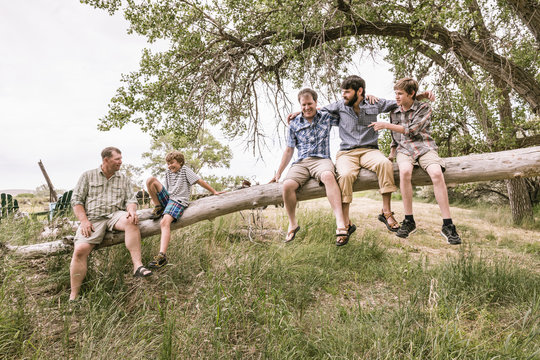 Father, sons and grandsons having fun playing on a leaning tree. Bridger, Montana, USA