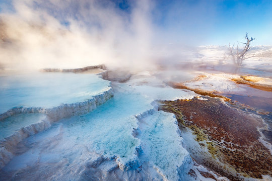 Mammoth Hot Springs with steamy terraces during winter snowy season in Yellowstone National Park, Wyoming, USA