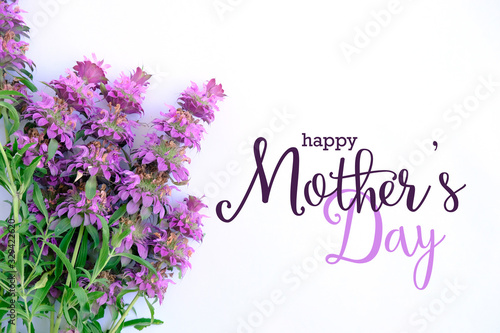 Mothers day background with purple flowers and text.