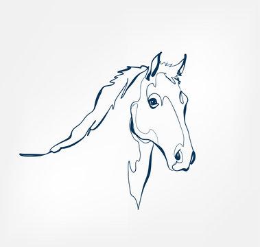 horse vector animal wild one line design