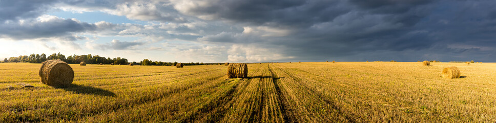 Zelfklevend Fotobehang Honing Scene with haystacks on the field in autumn sunny day. Rural landscape with cloudy sky background. Golden harvest of wheat in evening. Panorama.