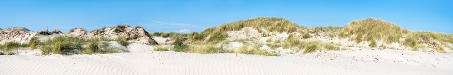 Wall Mural - Sand dunes as panoramic background