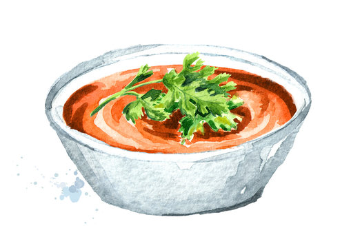 Red lentil cream soup. Hand drawn watercolor illustration  isolated on white background
