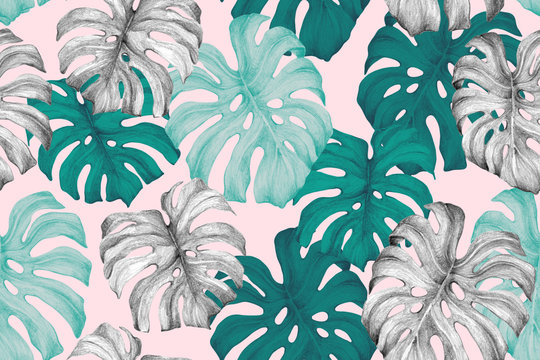 Minimal tropics background. Duo toned monstera leaves seamless pattern in turquoise pink trendy colors.