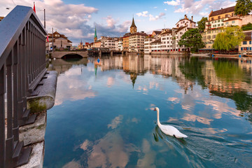 Papiers peints Cygne Swimming white swan in river Limmat, Fraumunster and St Peter church at sunrise in Old Town of Zurich, the largest city in Switzerland