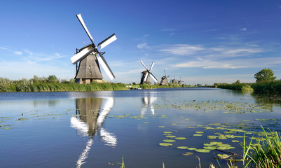 Holland windmills on the riverside; rural scenery reflecting on the water under the blue sky and white clouds