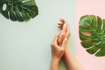 Pastel manicure on a blue and pink background with palm leaves. Tropical background with woman's hands Fototapete