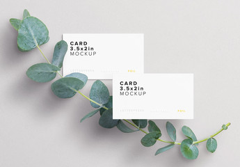 Business Cards with Eucalyptus Branch Mockup