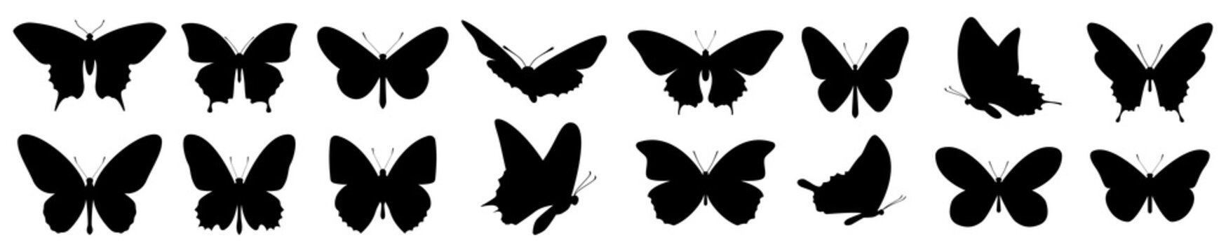 Butterflies silhouette set. Vector illustration