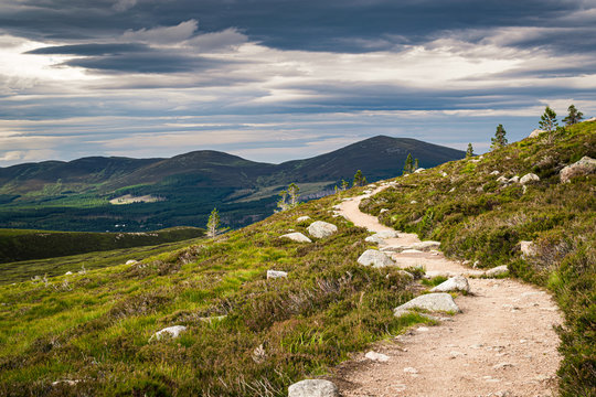 Hiking trail near Aviemore in Scottish Highlands with Cairngorms peaks on the horizon. Scenic summer landscape.