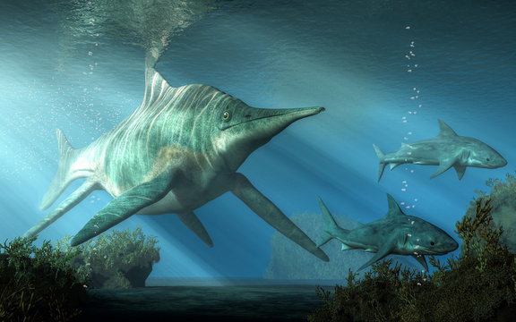 A massive creature pursues two sharks through the Triassic  seas. This is shastasaurus, an ichthyosaur, and the largest marine reptile ever. 3D Rendering.