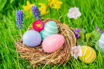 Spoed Fotobehang Tulp easter eggs in basket