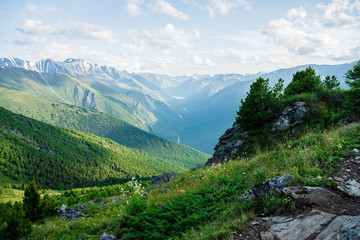 Beautiful alpine landscape with small conifer trees on rock on background of giant mountains and...