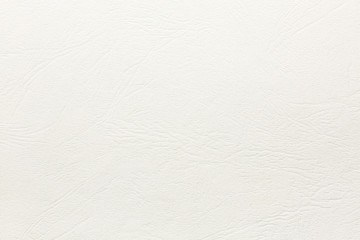 white paper with embossed leather texture. high detailed pattern
