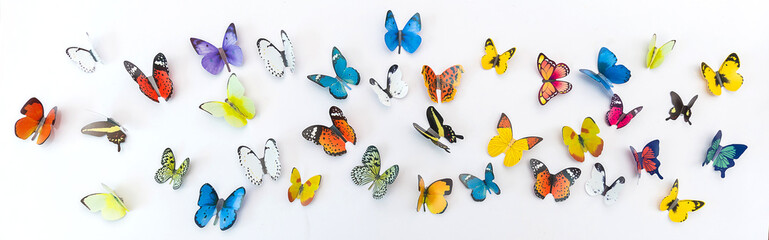 Photo of decorative butterflies pattern isolated on white background with copy space. Spring summer season flat lay and top view concept banner