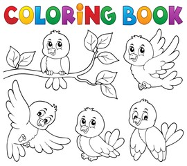 Fotorolgordijn Voor kinderen Coloring book happy birds theme 1